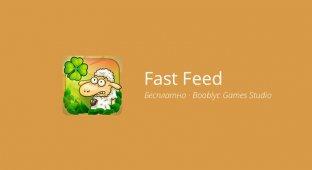 Fast Feed — кормим зверей со скоростью света