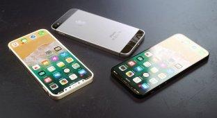 Опубликованы снимки дисплея iPhone SE 2